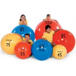 Balones Gymnic