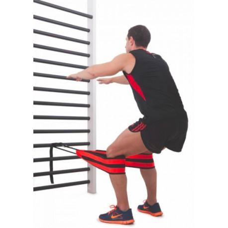 Cinturón Ruso - Tirante Muscular Económico