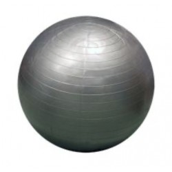 Fitness Ball 65cm Tecnocaucho Lite (color Plata)